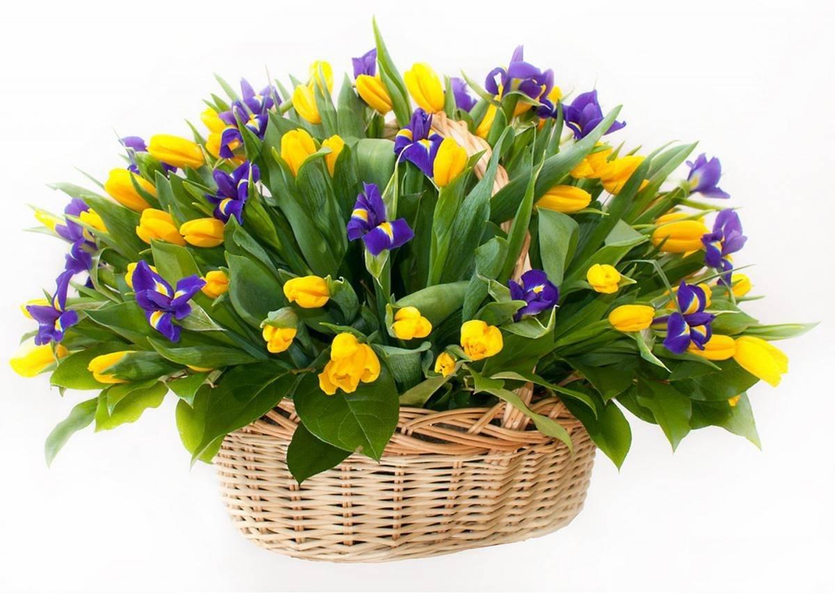 Открытка с букетом весенних цветов