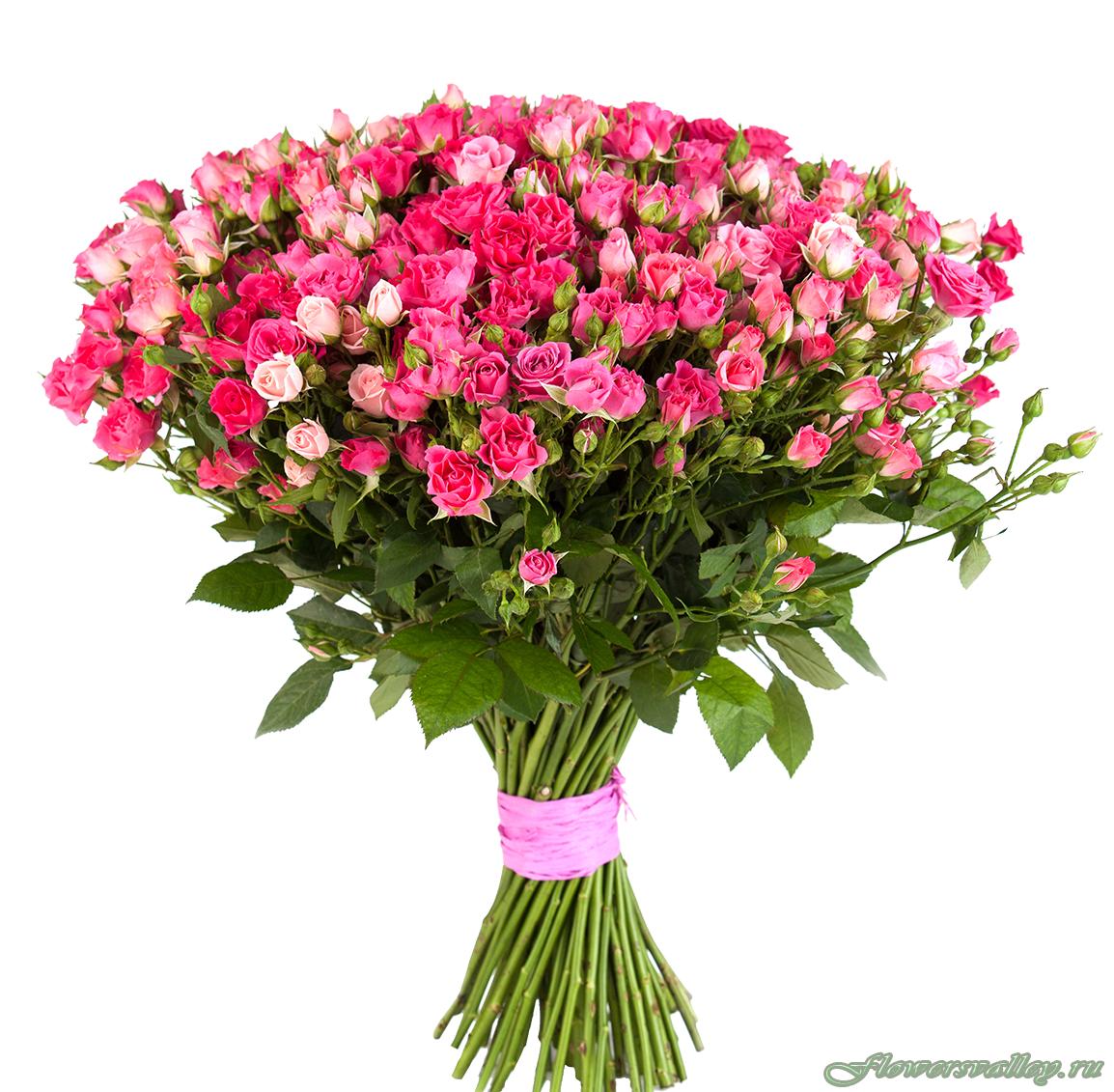 Орхидея, букет 51 кустовая роза