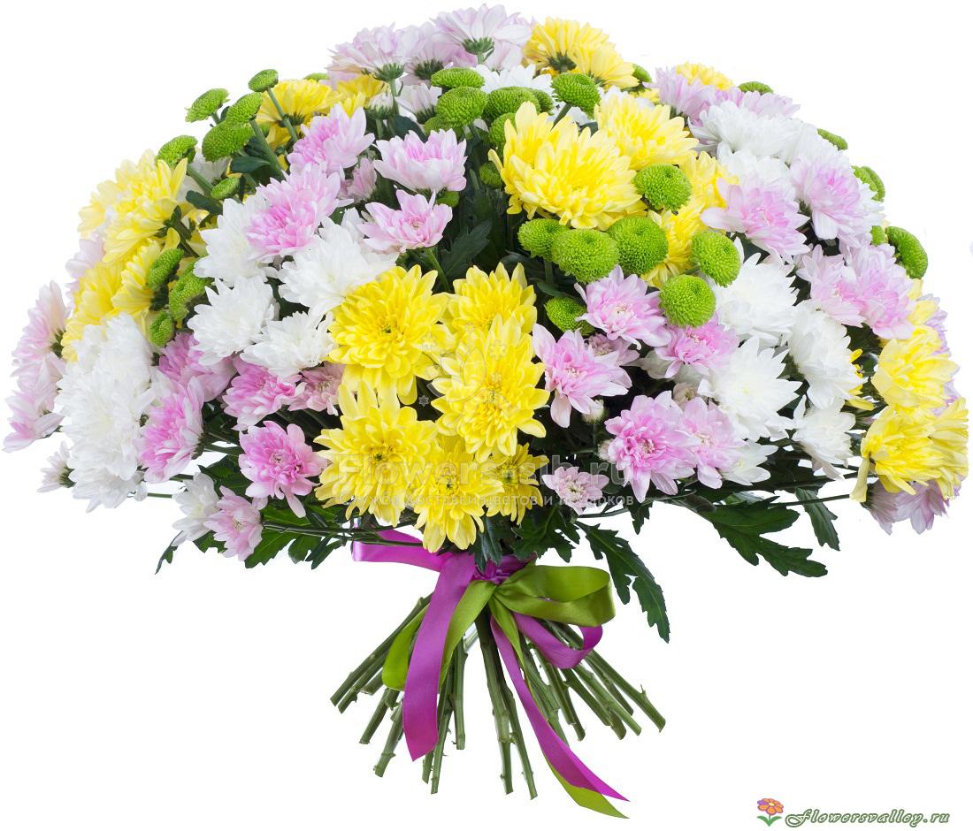 Вертикальный букет из хризантем, цветов курьером россии